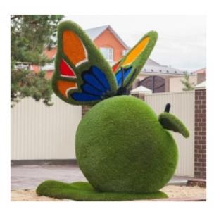 Бабочка на яблоке